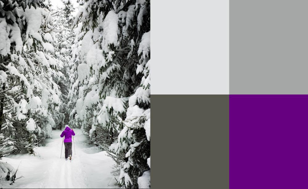 fk-fototips-vintern-färg-01.png