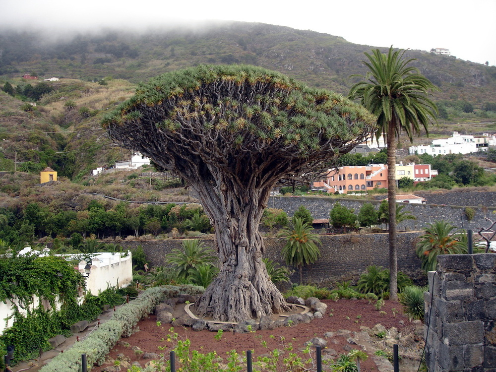 Picture courtesy: bestplacesinspain.com