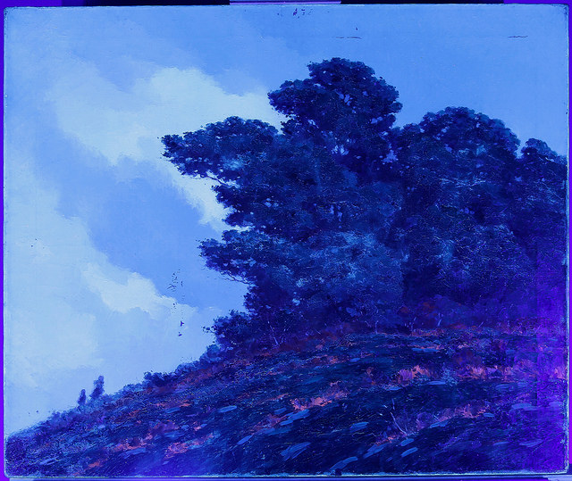 Under UV Light (Before Treatment)