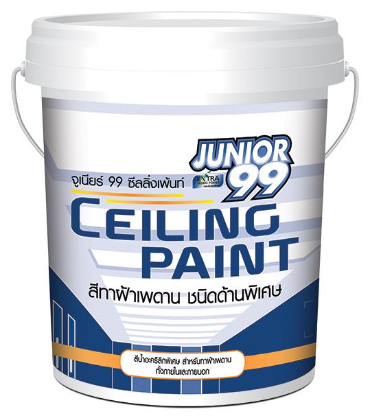 Junior99 ceiling_17_5_ltrs.jpg