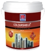 NIPPON Colour Shield+ Sola reflect สวยปกป้อง ทนทานทุกสภาวะ