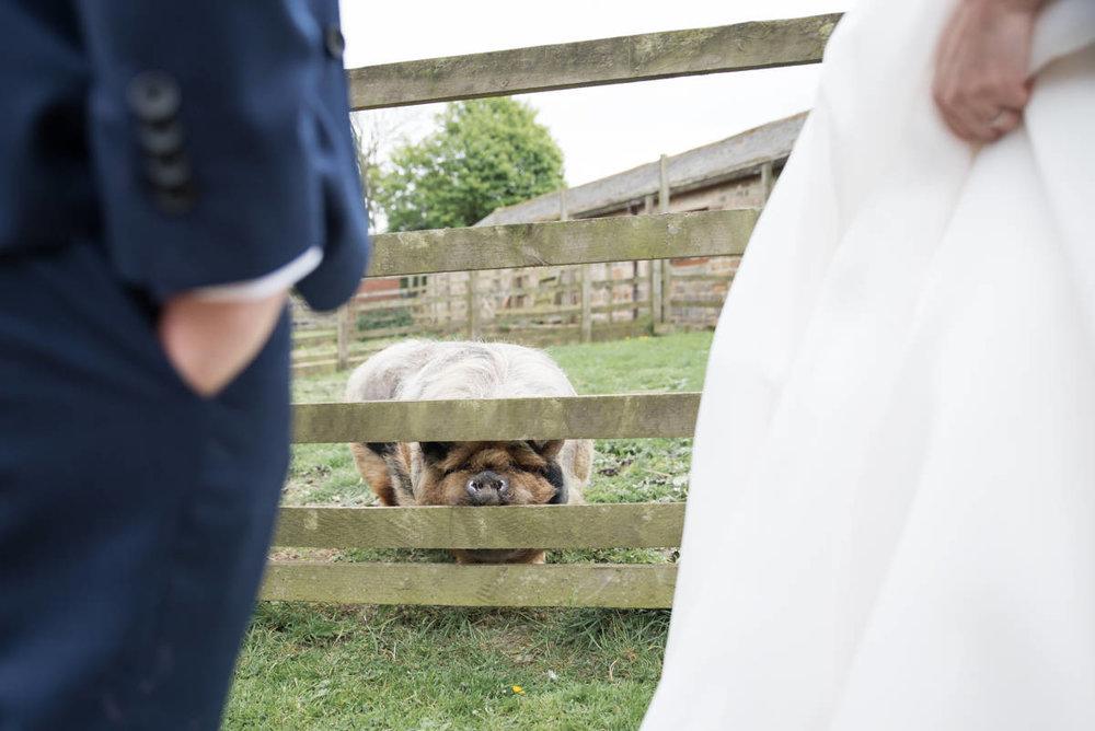Yorkshire Wedding Photographer - Natural Wedding Photography - Lineham Farm Wedding Photographer (116 of 219).jpg