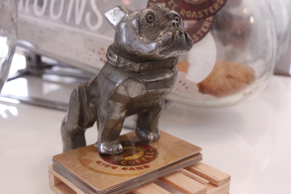 Bulldog on Cards.JPG