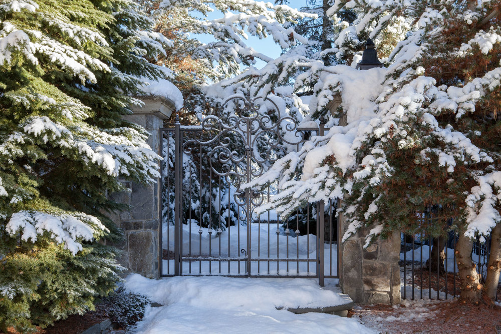 Treetop Winter Gate.jpg