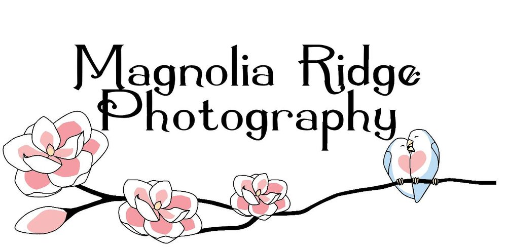 Magnolia Ridge Photography