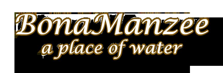 bonamanzee logo2.png