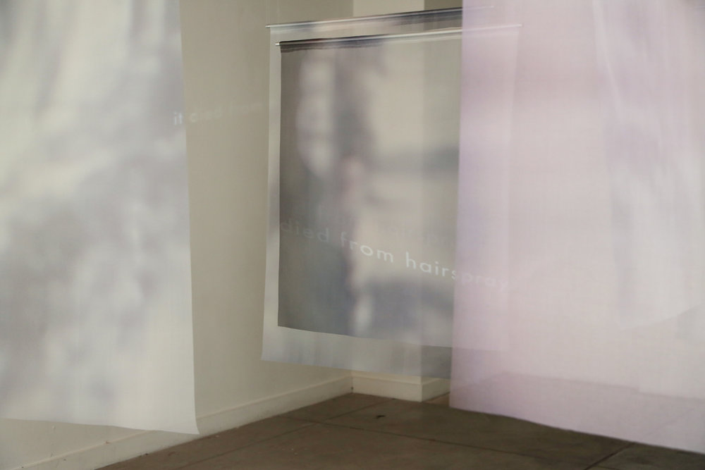 Inkjet prints on organza, single-channel video 2018