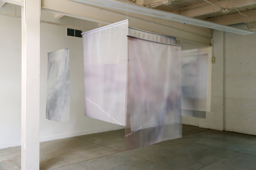 Inkjet prints on organza, single-channel video  2018
