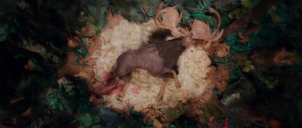 Jerrold Chong - Eclipse - Film Still 02.jpg