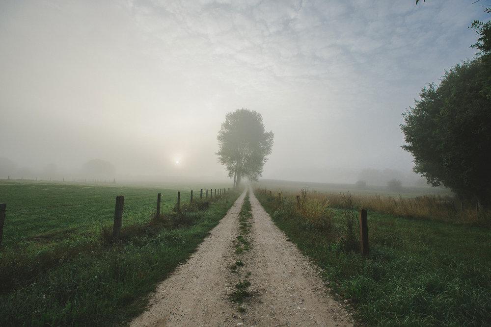 Photo 2 Phils-Camino-0004.jpg_website.jpg