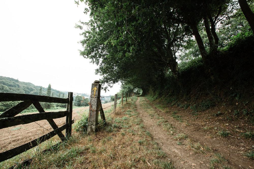 Photo 4 Phils-Camino-0022.jpg_country_camino_warrow.jpg
