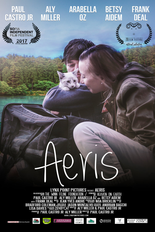 Aeris Poster HQ 11-4-17 Laurel.jpg