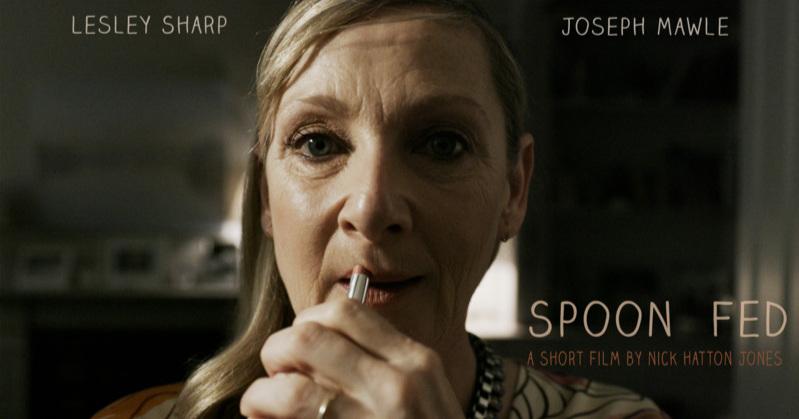 Poster spoonfedbanner_lesleysolo.jpg