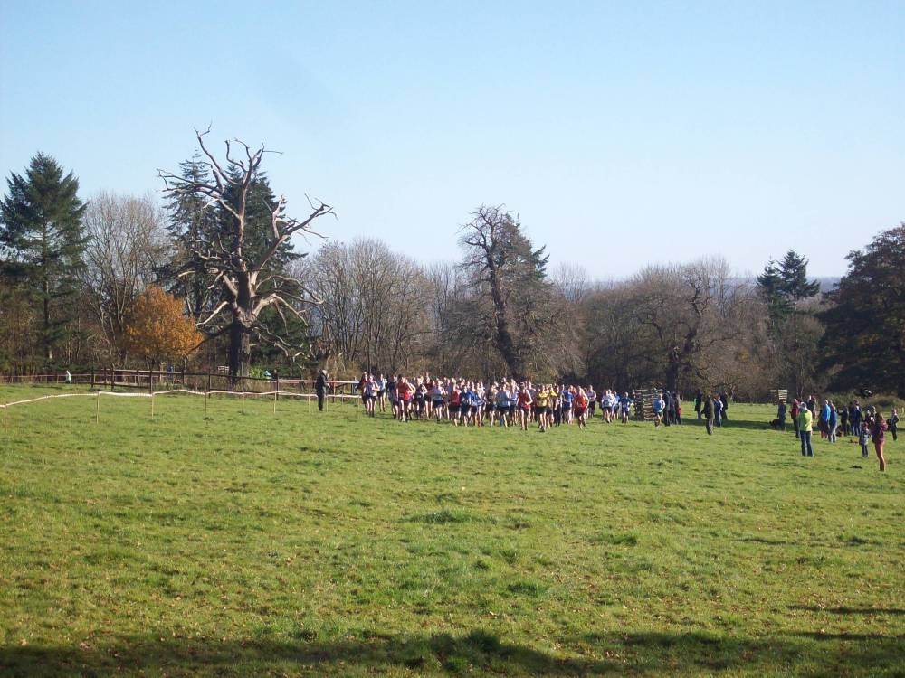croft castle xc 3.jpg