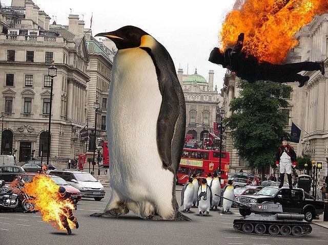 cca64852f3b95f5aa914cf5f881afad7--the-penguins-ellis.jpg