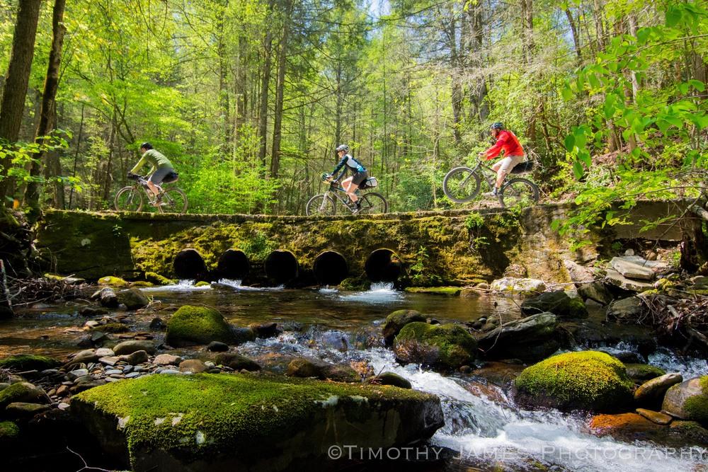 Bridge crossing_TJ Kearns