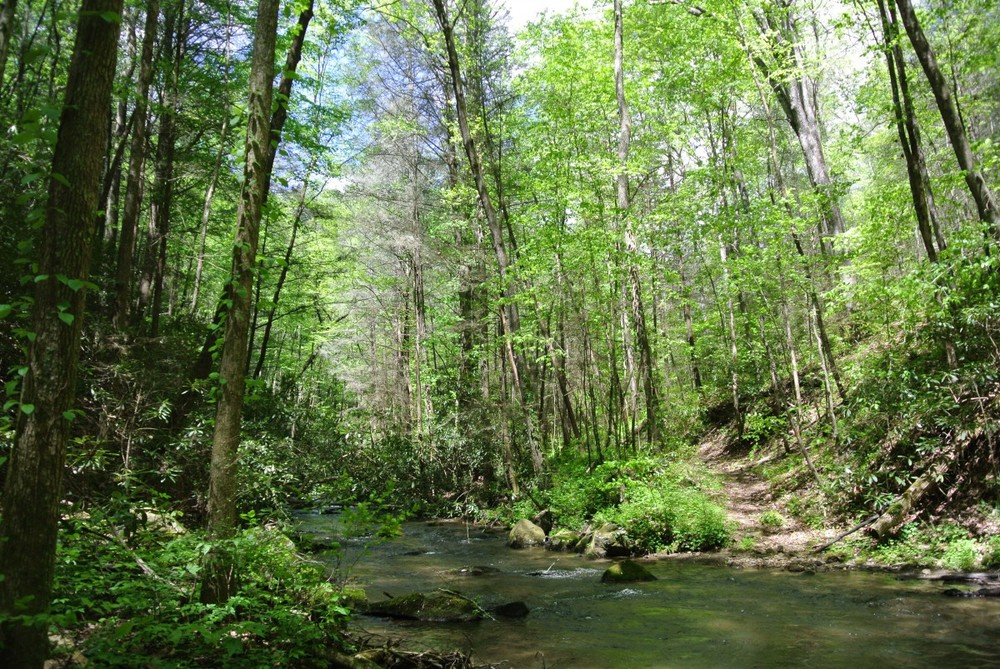 Mountaintown+Trail.jpg