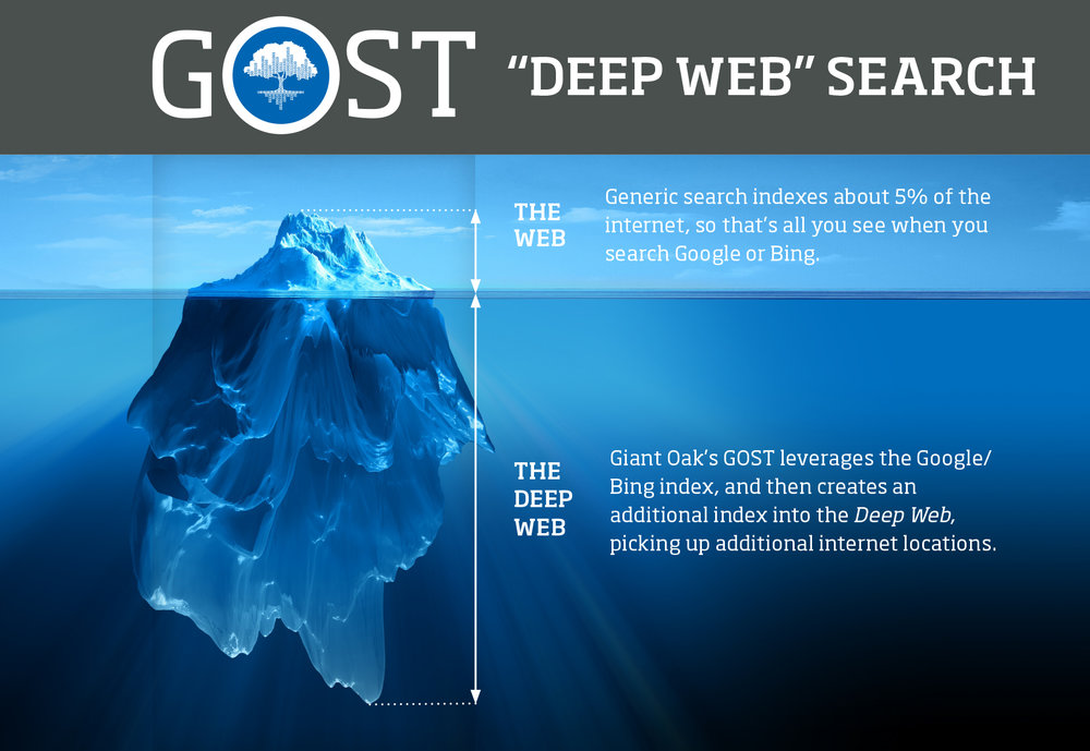 GOST Iceberg Graphic.jpg