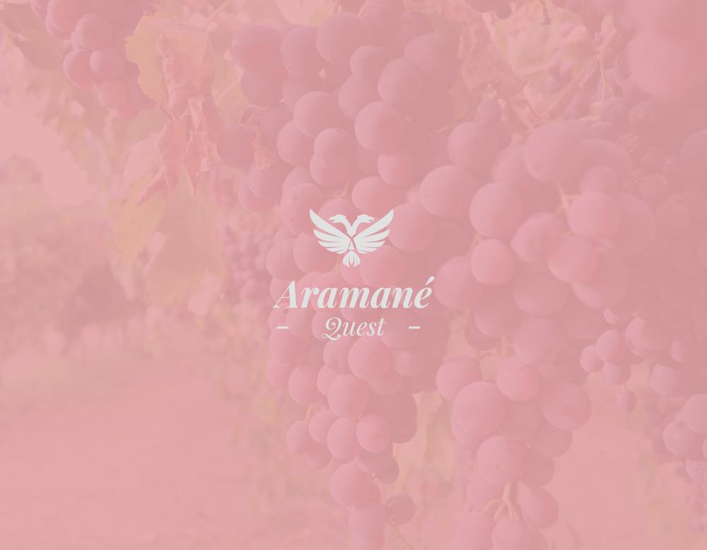 Aramane_02.jpg