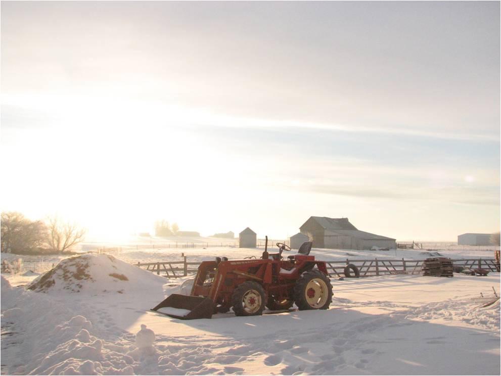 granja tractor.jpg