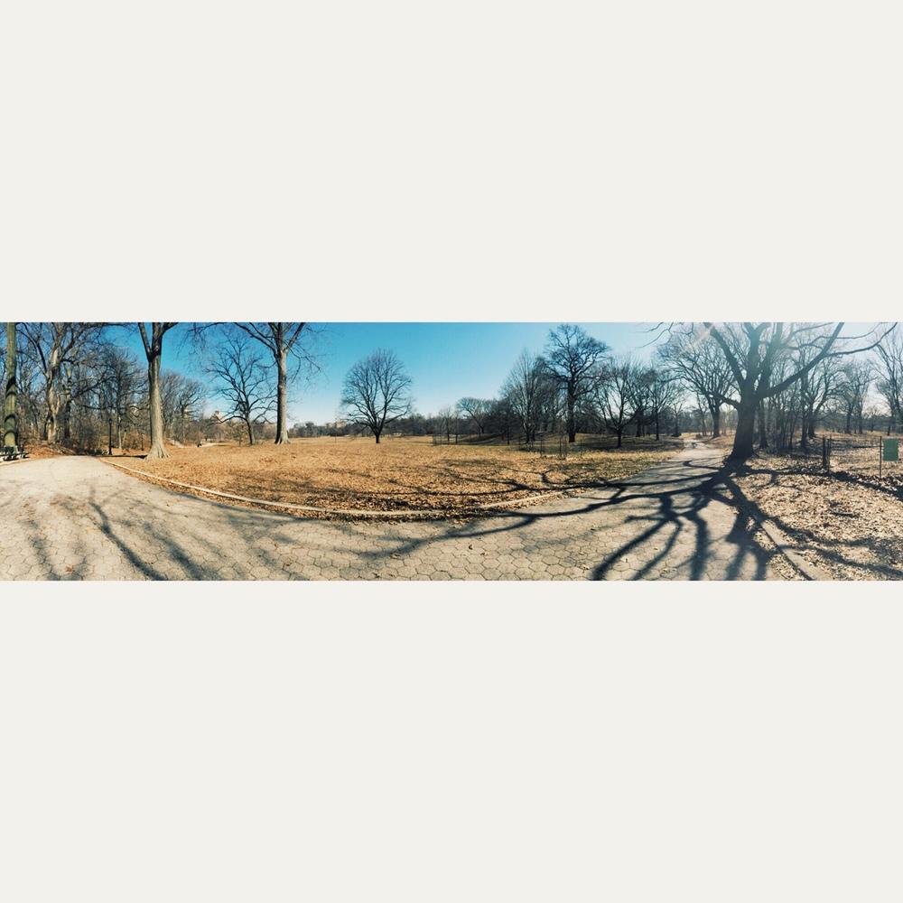 Prospect Park pano III