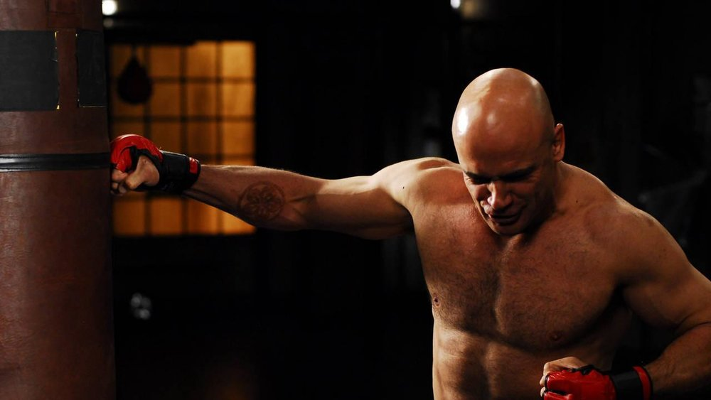 Bas Rutten Hitting a Heavy Bag on Fight Science (show).