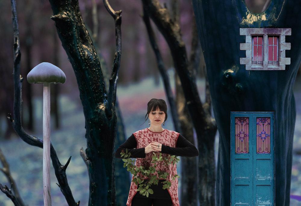 modern.elf.focus.jpg