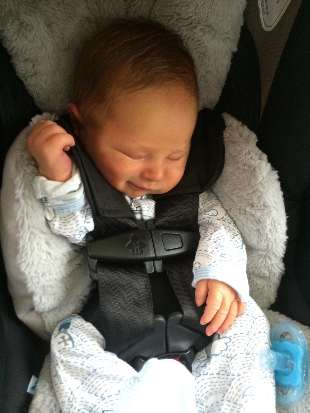 Loves a car-ride, but sneers in his sleep!