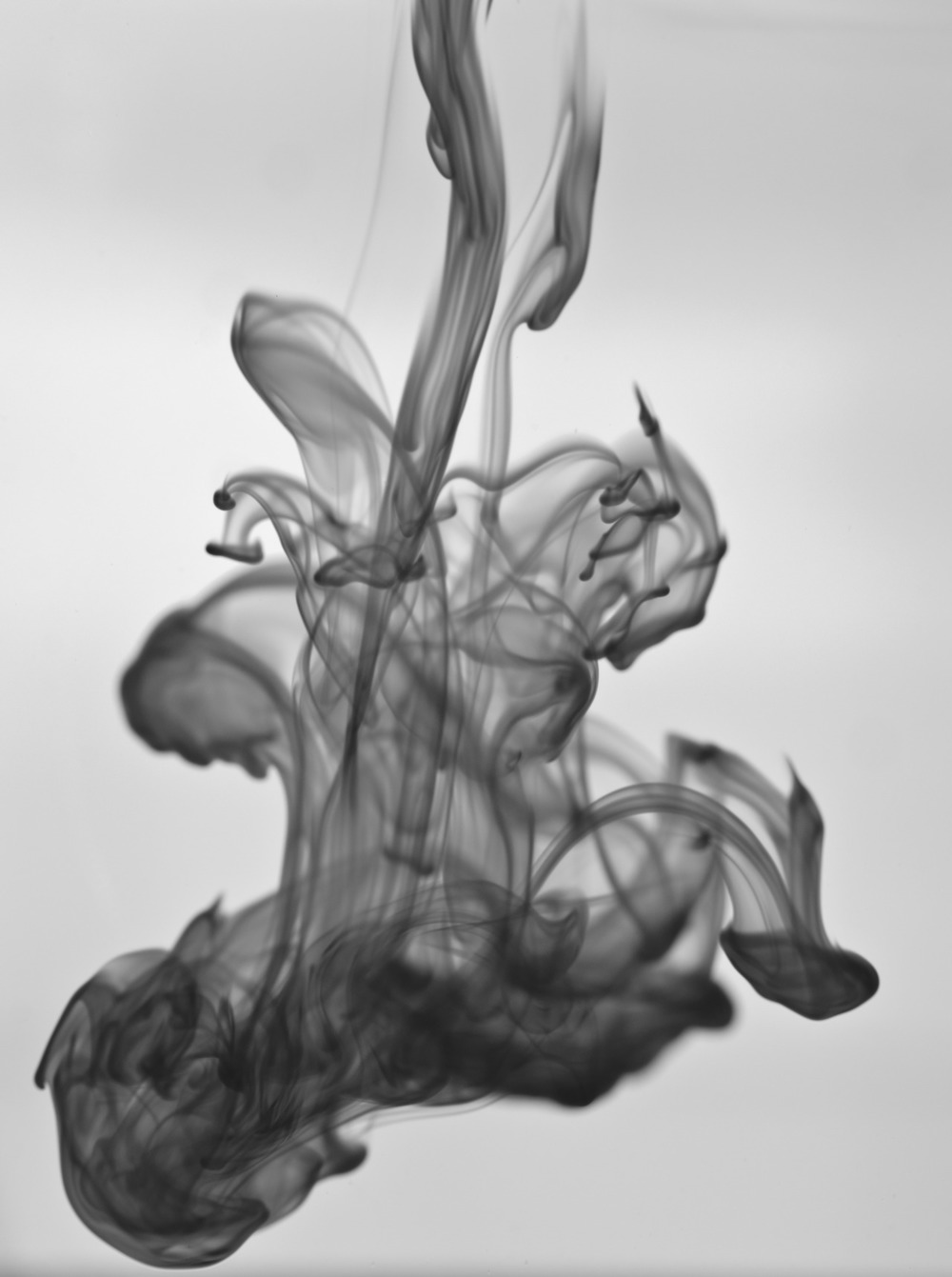 I Brian Craig Photography