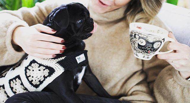 Photography and styling for @pugpod_emporium 💛 . . #pug #puglife #pugsofinstagram #cute #darlinghurst #byronbay #girlboss #freelance #logo #branding #styling #websitedesign #productdesign #lifestyle #design #handmade #collaborate #portfolio #womeninbusiness #blogger #monalisa #monalisathepug #mascot #pugpod