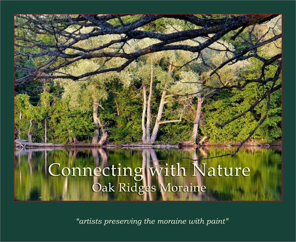 - In 2009, community artists from Lake Simcoe to Pickering, Caledon to Colborne were out painting scenes depicting the vast beauty of the moraine. From these impressions, twenty outstanding images were chosen to promote the awareness of our environment. Proceeds from the book will be donated in support of the preservation of the Oak Ridges Moraine.View the publication online.To purchase this book, contact moraine-art@sympatico.ca