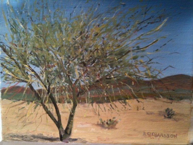 Desert Collection -