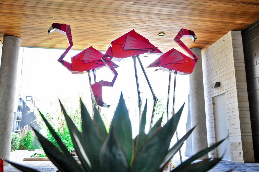 Flamingo_02.jpg