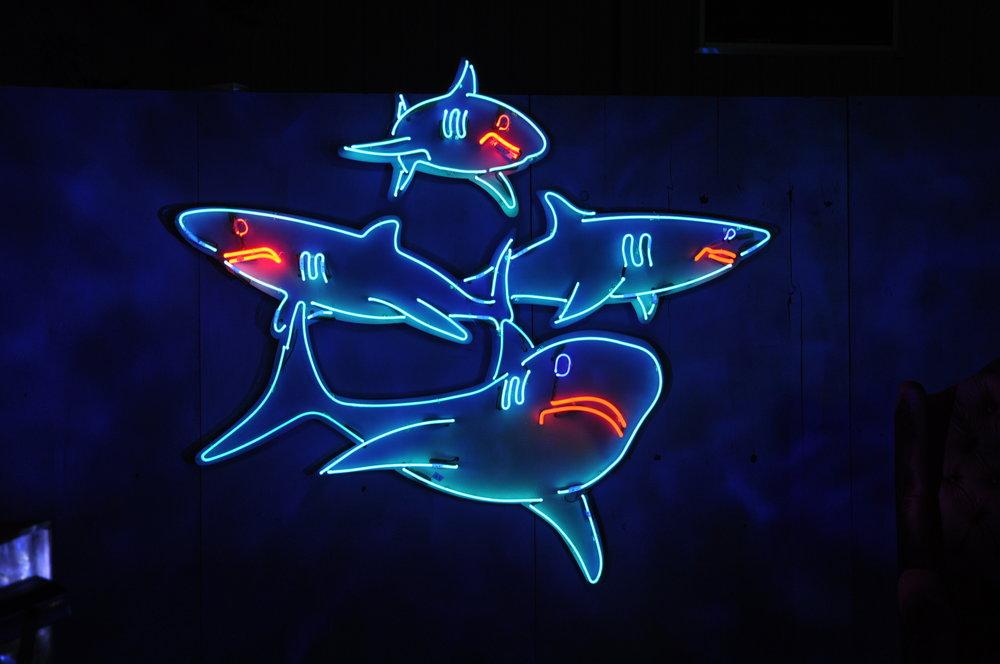 SS School of Sharks.JPG