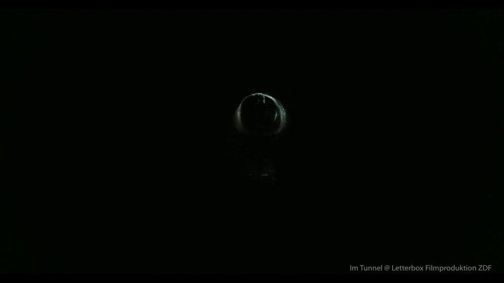 Im Tunnel Regie Kai Wessel-7.jpg-51.jpg