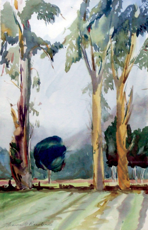 bwf2_Eucalyptus_1500_jm.jpg