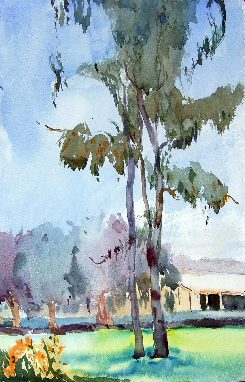 EucalyptusOnASummerDay_DSCF2376_1500.jpg