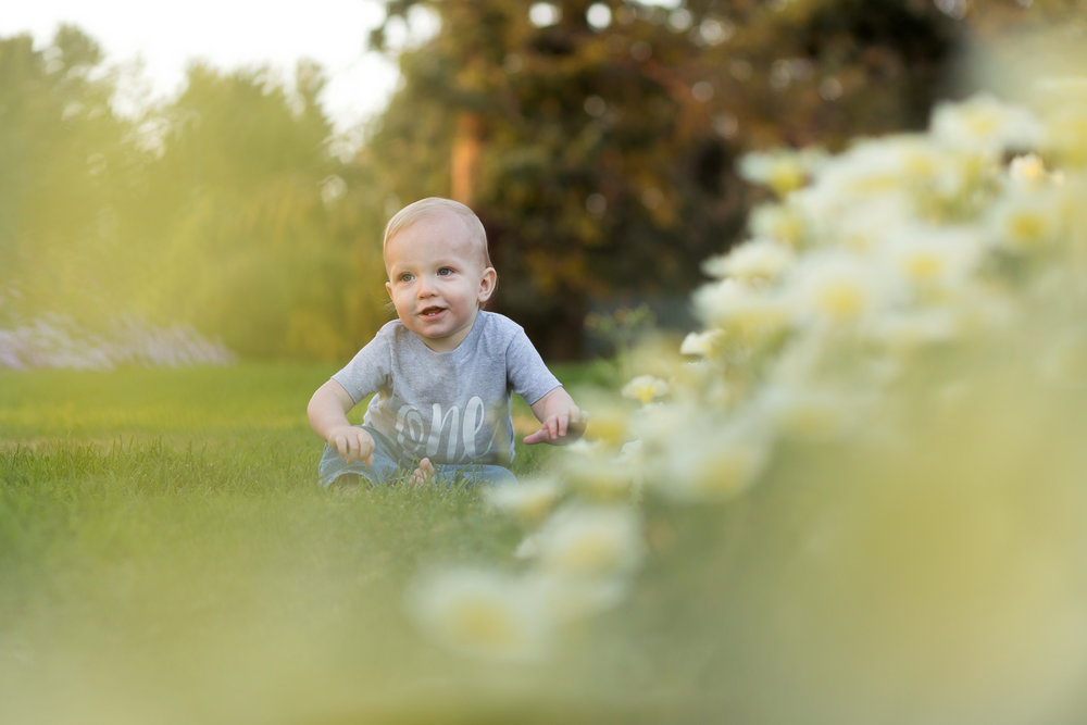 Denver Newborn Photographer, Denver Maternity Photographer, Boulder Newborn Photographer BOulder Maternity photographer-9526.jpg