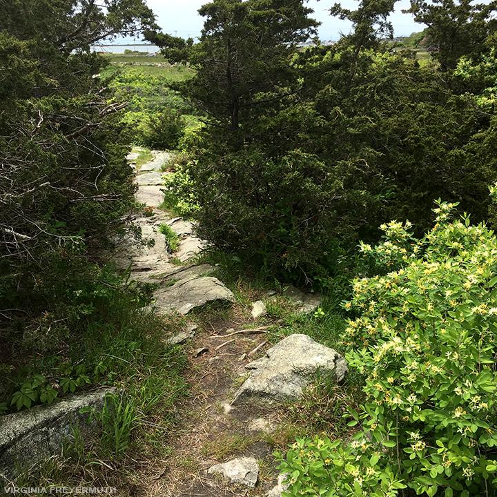 Sanctuary Pathway