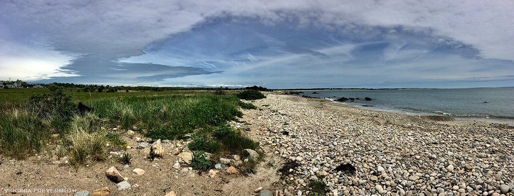 Freyermuth_Buzzards Bay