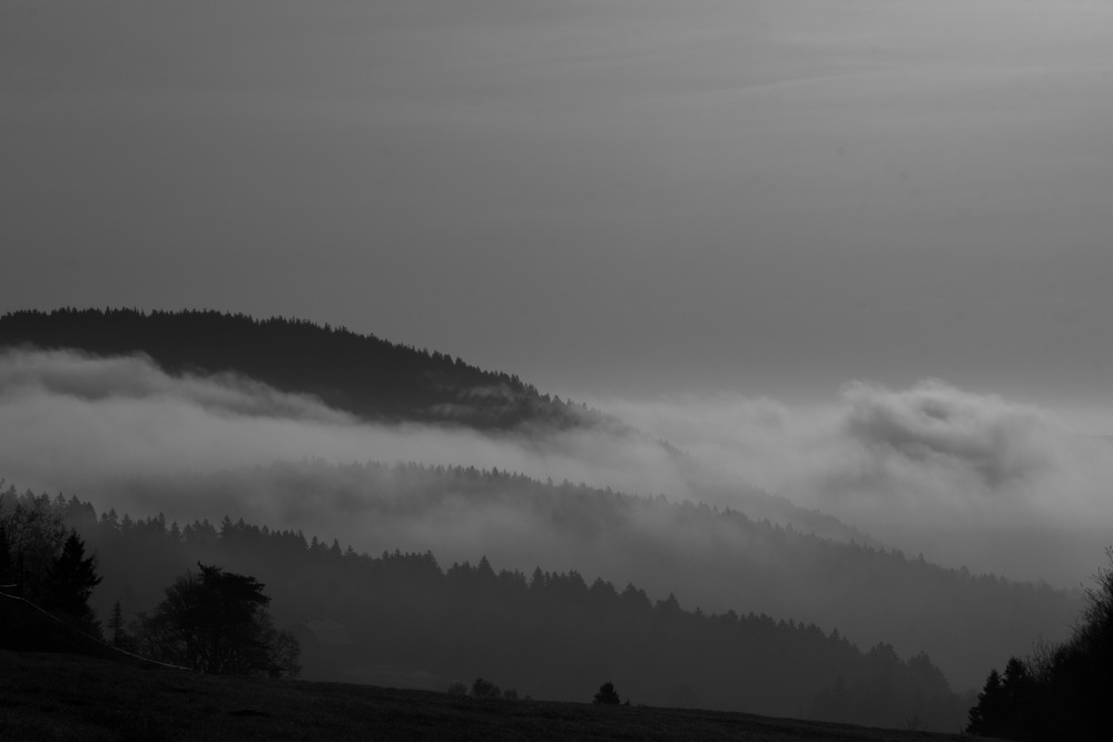 Fog Rolling Over the Bay of Fundy
