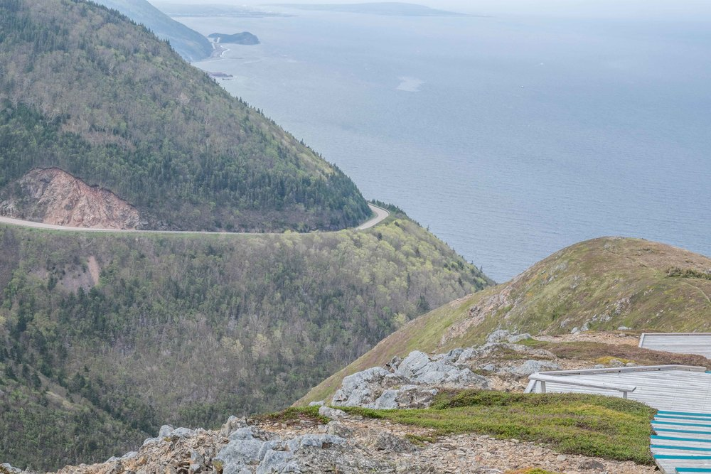 The boardwalk pictured which winds along the spine of the ridge was built to stop loss of precious plants and top soil which were being destroyed by foot traffic.  It was built mindfully so that when looking from the Cabot Trail you're unable to see it, therefore not altering the natural look of this beautiful place.