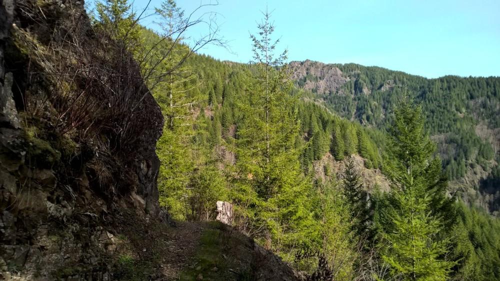 Wilson Rive Trail bluff