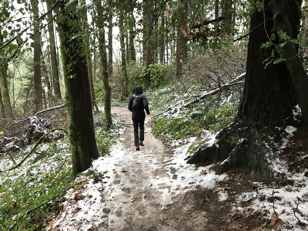 Wet and slick Wildwood Trail with Yassine  Dec 10 - Washington Park, Portland, OR