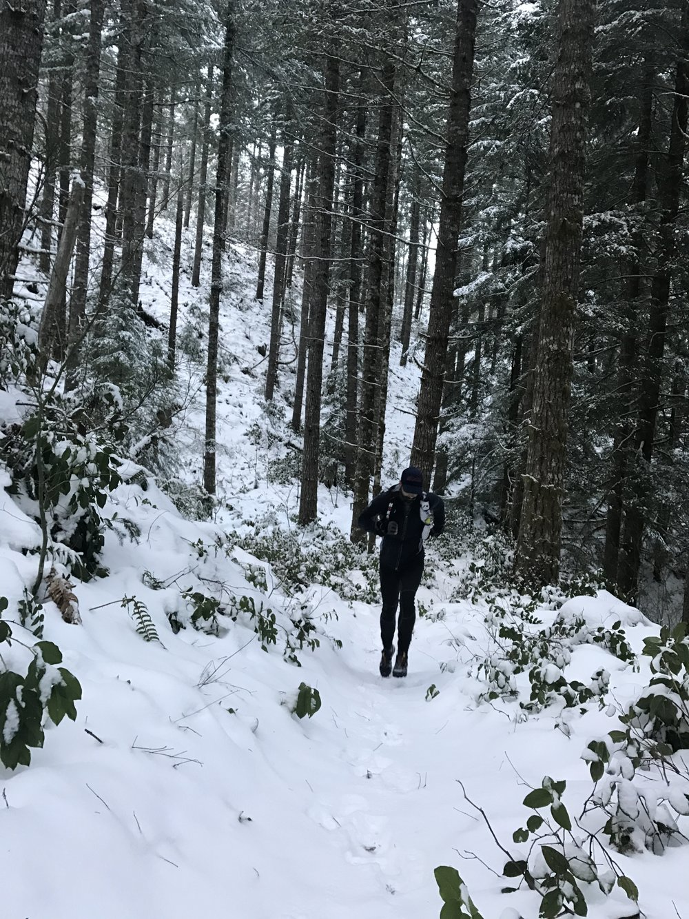 Jordan Carey pushing through the powder - Tillamook Forest, Timber, OR