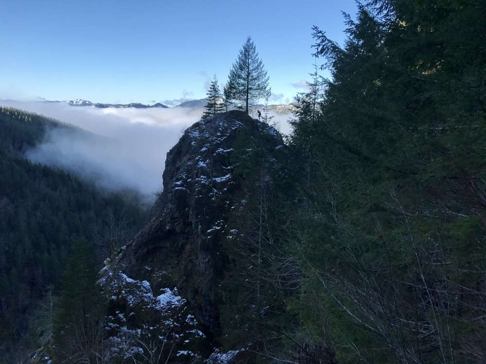 Steven getting above the clouds - Wilson River Trail - Tillamook
