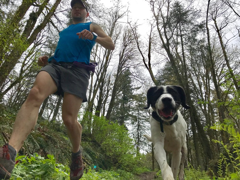 Fire Lane 2 - Forest Park, Portland, OR - Dog jog with my girl Coconut