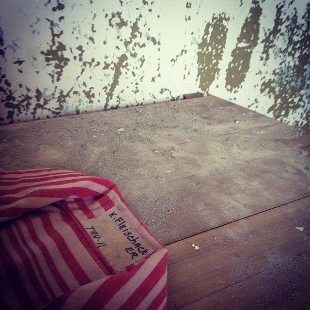 #pa #pennhurst #pennhurstasylum #careyfruth #urbanexploration #abandonedhospital #decay