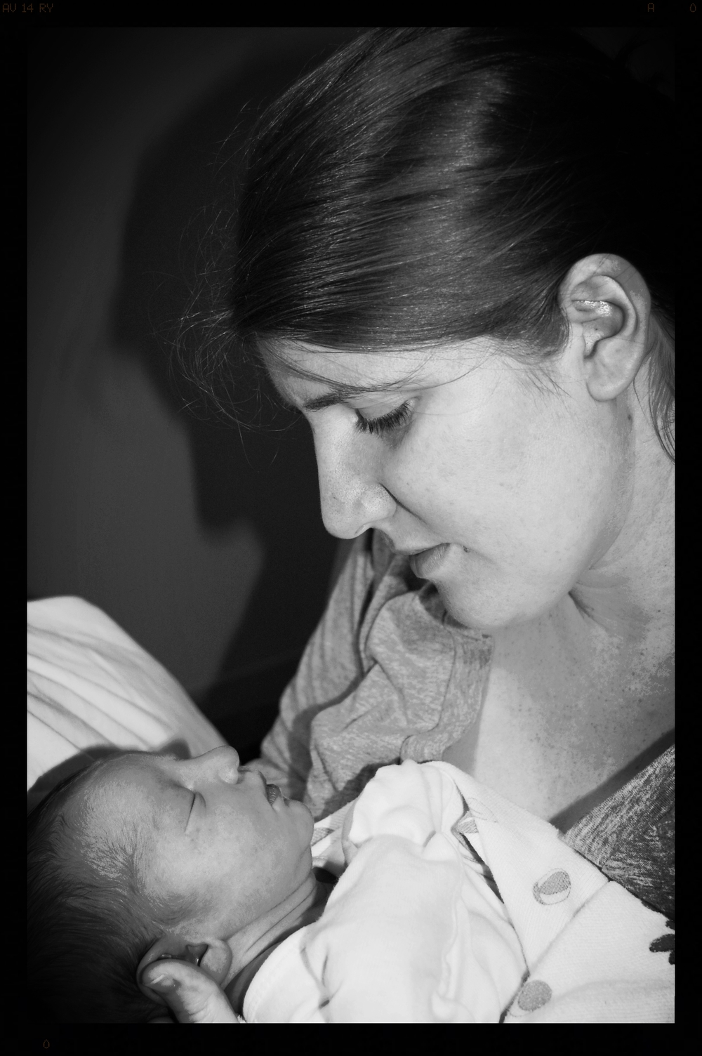 postpartum doula-motherline-postpartum support-doula support