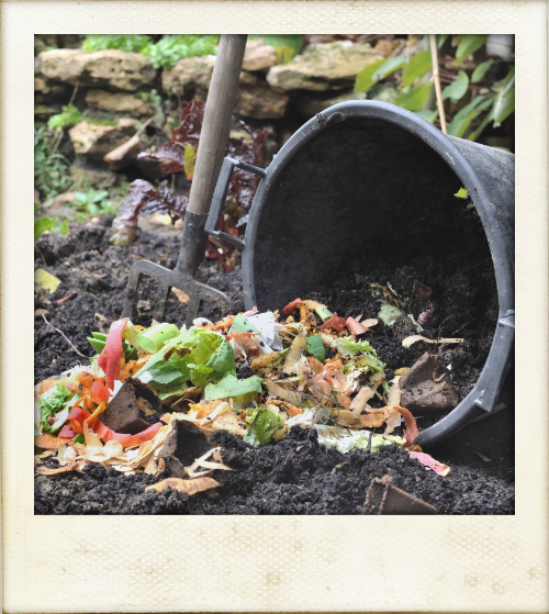Everything Food Waste